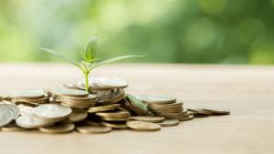 3 ervas que atraem dinheiro para sua vida - planta nascendo na moeda