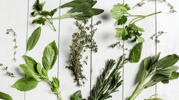 Banho de ervas como terapia natural