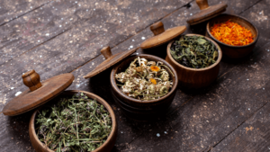 5 Plantas para Incluir no seu dia a dia