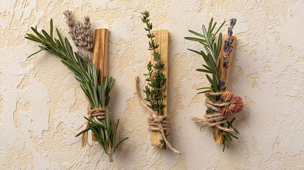 Três pequenos ramos de plantas presos em pequenos pedaços de madeiras. Compostos Fitoenergéticos - energia das plantas